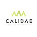 calidae